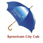 Spectrum City Cub